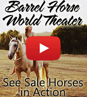 Barrel Horse World Videos
